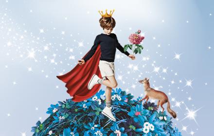 Путешествие Маленького принца, фото